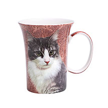 Feline Friends Black & White Cat Fine Bone China Mug