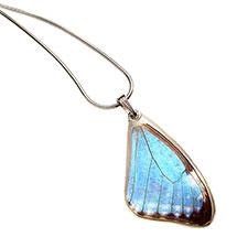 Blue Morpho Portis Butterfly Wing Pendant