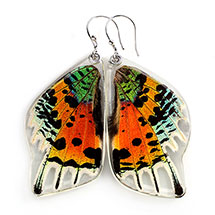 Sunset Butterfly Wing Earrings