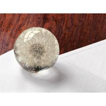 Dandelion Paperweight