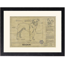 Personalized Framed Dog Breed Architectural Renderings - Rottweiler