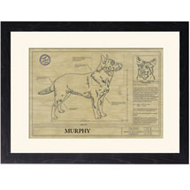 Personalized Framed Dog Breed Architectural Renderings - Australian Cattle Dog
