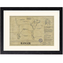Personalized Framed Dog Breed Architectural Renderings - Black and Tan Coonhound