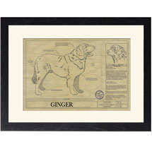 Personalized Framed Dog Breed Architectural Renderings - Leonberger
