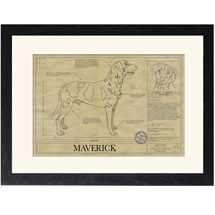 Personalized Framed Dog Breed Architectural Renderings -Catahoula Leopard Dog