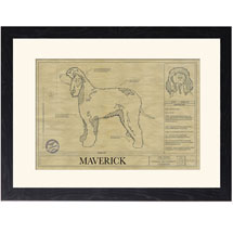 Personalized Framed Dog Breed Architectural Renderings -Irish Water Spaniel