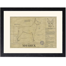 Personalized Framed Dog Breed Architectural Renderings -Mountain Cur