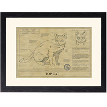 Personalized Framed Cat Breed Architectural Renderings - Korat