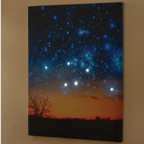 Unique's Shop LIGHTED NIGHT SKY CANVAS at Sears.com