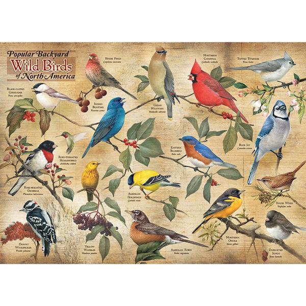 Popular Backyard Wild Birds Of North America 1000 Piece