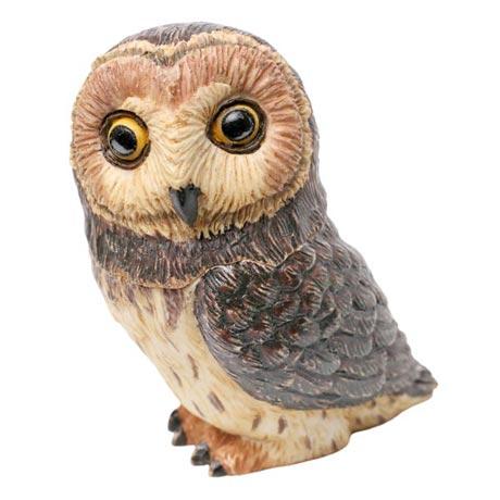 Owl Pot Bellys® Boxes - Short Ear Owl