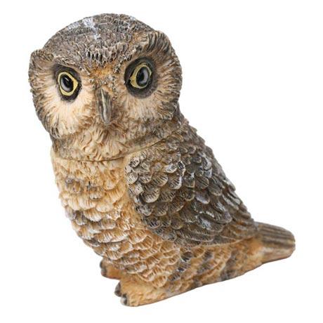 Owl Pot Bellys® Boxes - Hawk Owl