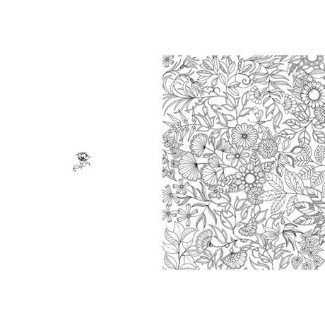 Secret Garden: Artist's Edition