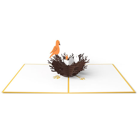 Birds Nest Lovepop Card