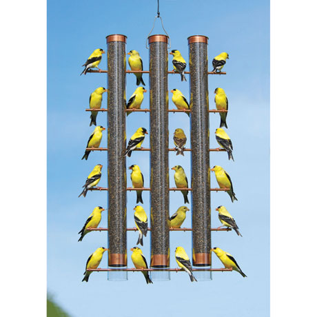 Flock of Finches Feeder