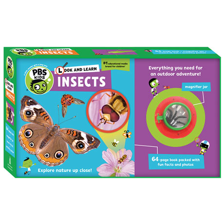 Look and Learn Insects