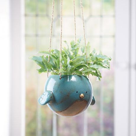 Bluebird Hanging Planter