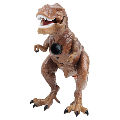 Dinosaur Projector and Room Guard