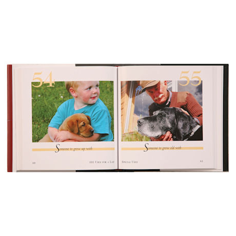 101 Uses For a Dog Book - Lab