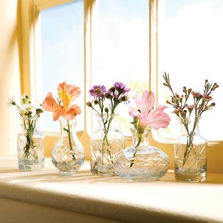 Quintet of Petite Vases