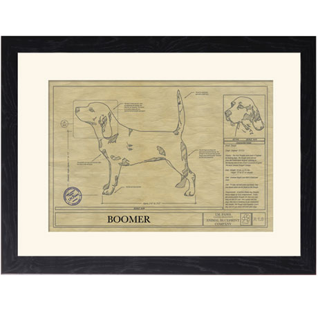Personalized Framed Dog Breed Architectural Renderings - Beagle
