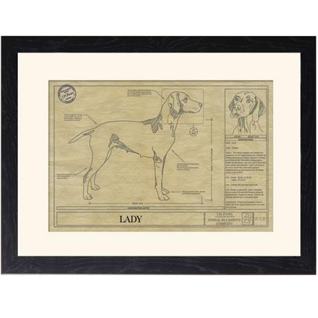 Personalized Framed Dog Breed Architectural Renderings - Vizsla