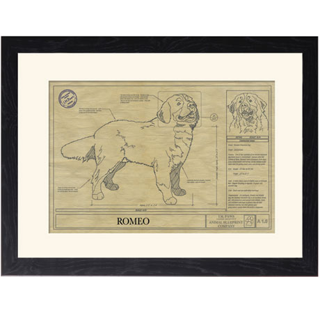Personalized Framed Dog Breed Architectural Renderings - Bernese Mountain Dog