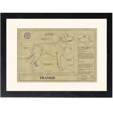 Personalized Framed Dog Breed Architectural Renderings - Chesapeake Bay Retriever