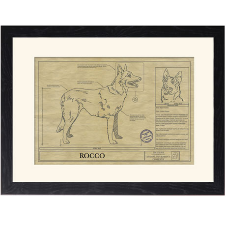 Personalized Framed Dog Breed Architectural Renderings - Belgian Malinois