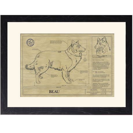 Personalized Framed Dog Breed Architectural Renderings - Shetland Sheepdog