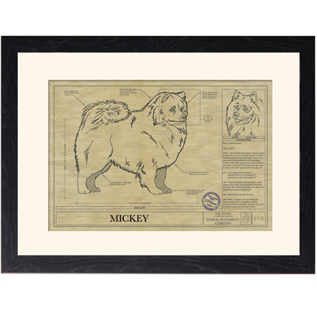 Personalized Framed Dog Breed Architectural Renderings - American Eskimo