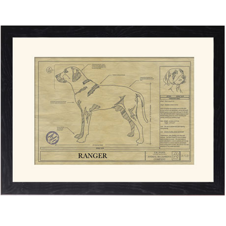 Personalized Framed Dog Breed Architectural Renderings - Black Mouth Cur