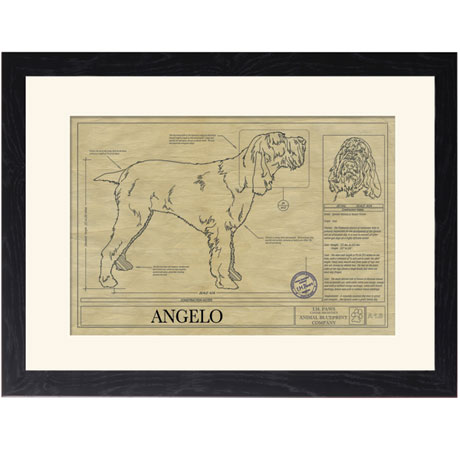 Personalized Framed Dog Breed Architectural Renderings - Italian Pointer