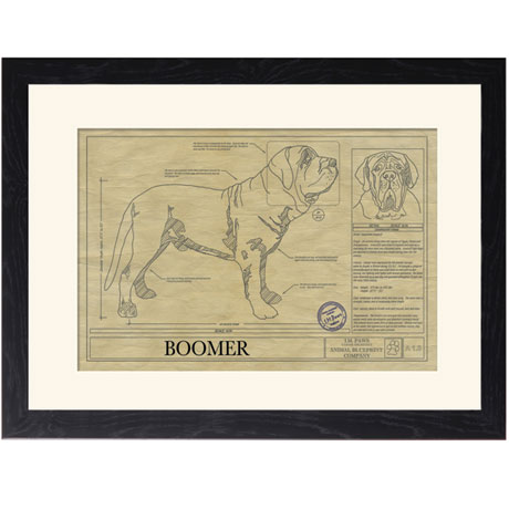Personalized Framed Dog Breed Architectural Renderings - Neapolitan Mastiff