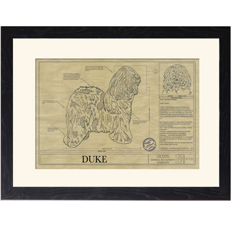 Personalized Framed Dog Breed Architectural Renderings - Old English Sheepdog