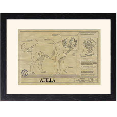 Personalized Framed Dog Breed Architectural Renderings - Saint Bernard