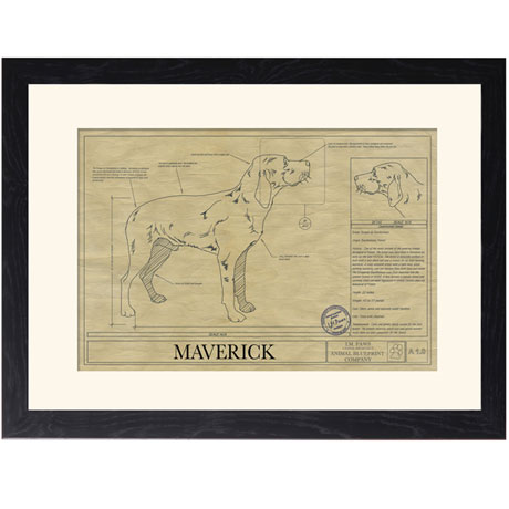 Personalized Framed Dog Breed Architectural Renderings -Braque du Burbon