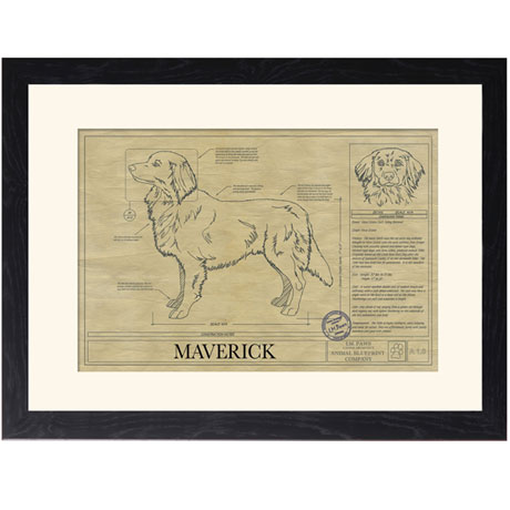 Personalized Framed Dog Breed Architectural Renderings -Nova Scotia Duck Tolling Retriever