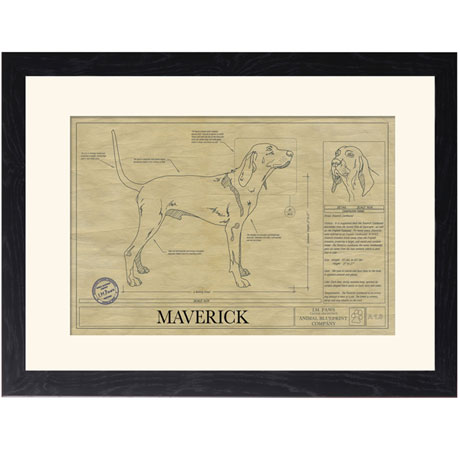 Personalized Framed Dog Breed Architectural Renderings -Bluetick Coonhound