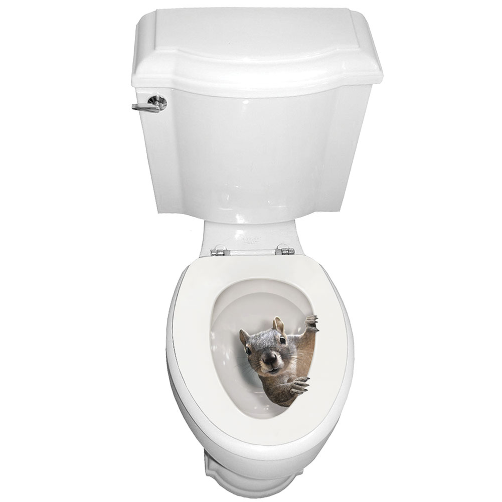 Exclusive It 39 S A Squirrel Toilet Seat Lid Tattoo Cover Oval EBay